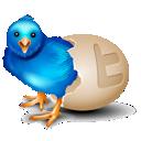 bird, egg