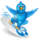bird, surfing, twitter icon
