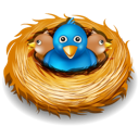 birds, nest, twitter icon