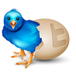 bird, egg icon