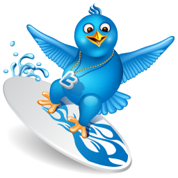 bird, surfing, twitter icon