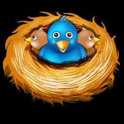 birds, nest, twitter icon