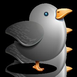 bird, gray bird, grey, twitter icon