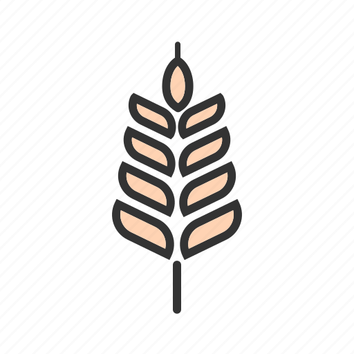 food, harvest, healthy, natural, plant, summer, wheat icon