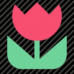 camera, flower, macro, photo icon