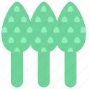 asparagus, food, sparrowgrass, vegetable icon