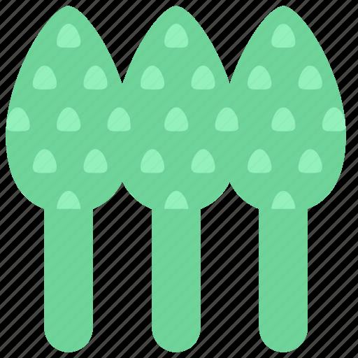 asparagus, food, sparrowgrass icon