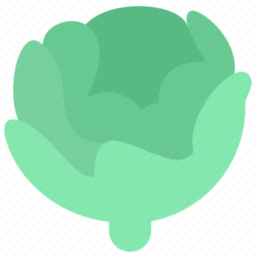 cabbage, food, salad icon