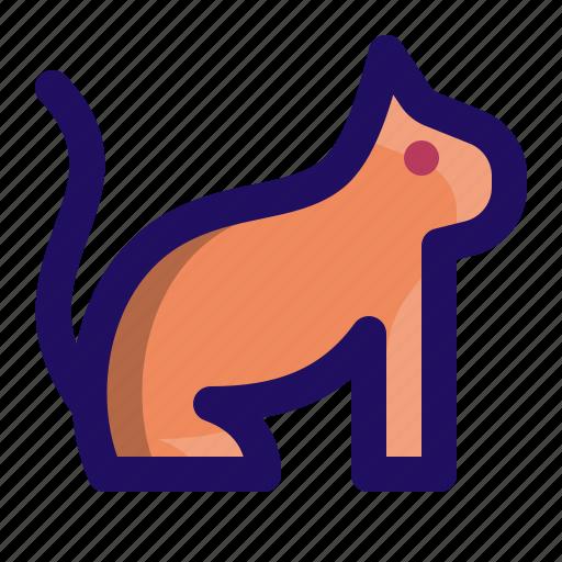 animal, cat, kitten, kitty, pet icon