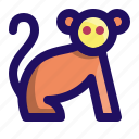 animal, ape, chimp, monkey, primate icon