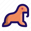 animal, mammal, marine, sea, walrus icon
