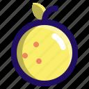 food, fruit, fruits, orange