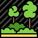 landscape, land, terrain, jungle, forest, tree