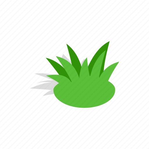 Garden, green, isometric, plant, shrub, summer, tree icon - Download on Iconfinder