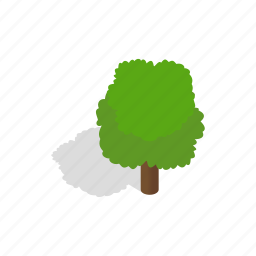 design, environment, fluffy, green, isometric, nature, tree icon