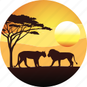 africa, horizon, landscape, lion, nature, safari, savanah, sunset, tourizm, travel icon