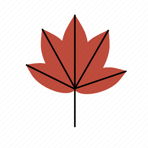 autumn, floral, leaf, tree, tropical icon