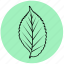 eco, elm, floral, forest, leaf, liner, nature icon