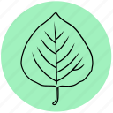 aspen, forest, garden, leaf, liner, nature, plant icon
