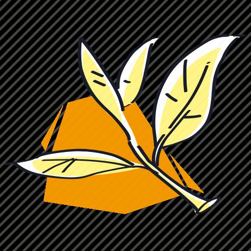green, green tea, leaf, tea icon
