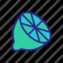 contour, food, fresh, lime, lemon icon
