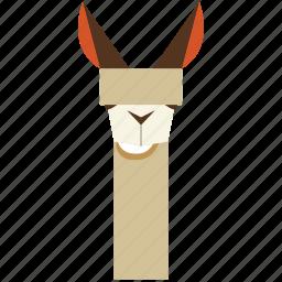 animal, animal face, camel, cartoon, lama, lama face, linear animal icon