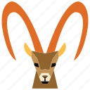 animal, animal face, cartoon, gazelle, gazelle face, linear animal icon
