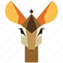 animal, animal face, antilope, cartoon, deer, gazelle, linear animal icon