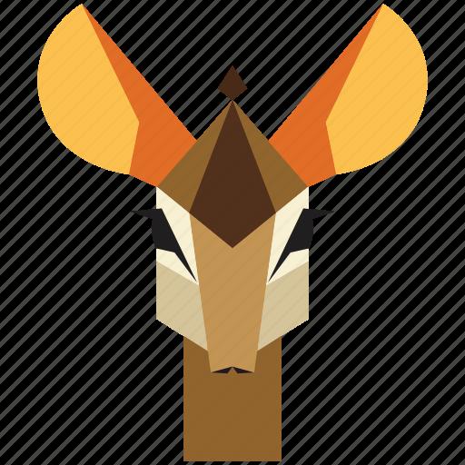 animal, animal face, antilope, cartoon, deer, gazelle, linear animal icon