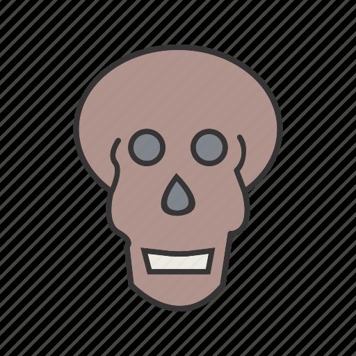 medical, ray, skull, x icon