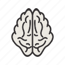 brain, creative, health, healthcare, memory icon