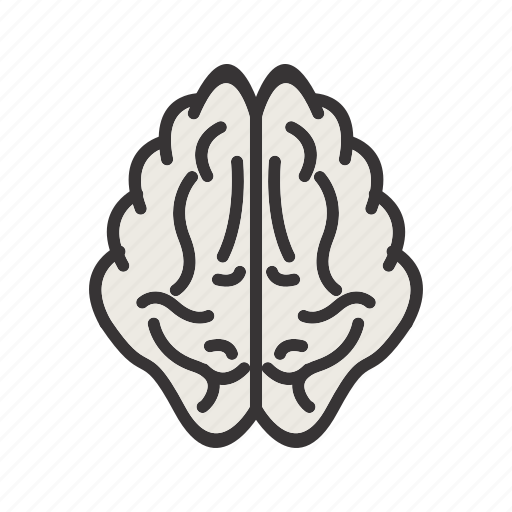 brain, memory icon