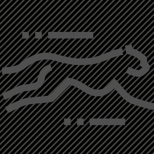 agile, animal, cheetah, fast, rapid, running, speed icon