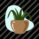 cactus, garden, leaf, succulent, tree icon