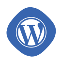 blogging, coding, development, logo, wordpress, wp, writing icon