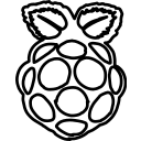 logo, pi, raspberry icon