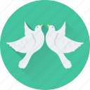 bird, love message, loving bird, pigeon, romance icon