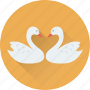 animal, bird, duck, in love, kissing icon