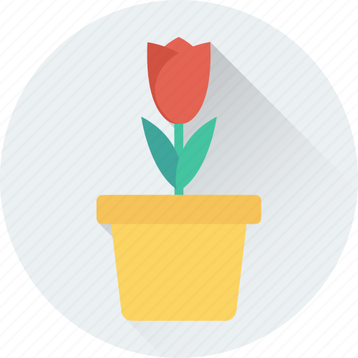 feeling loved, heart, love in air, plant, potted plant icon