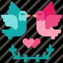 bird, dove, love, peace, pigeon