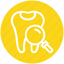 find, glass, magnifier, magnifying glass, search, teeth, zoom
