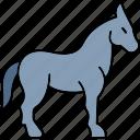 mules, donkey, animal, horse