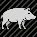 pig, pork, animal, farm