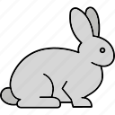 nature, rabbit, animal, farm