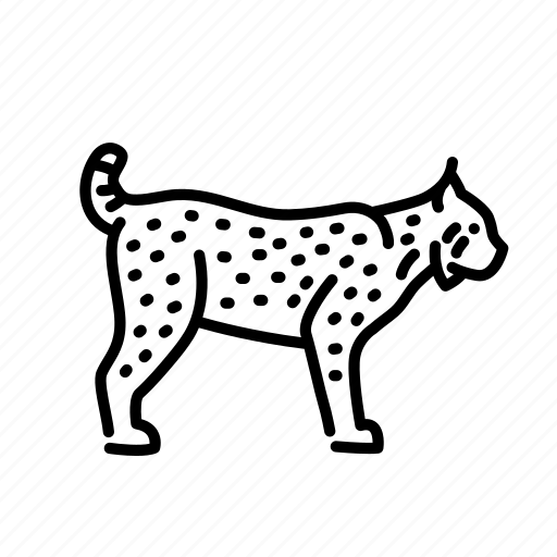animal, cat, lynx, mammal, nature, wildlife icon