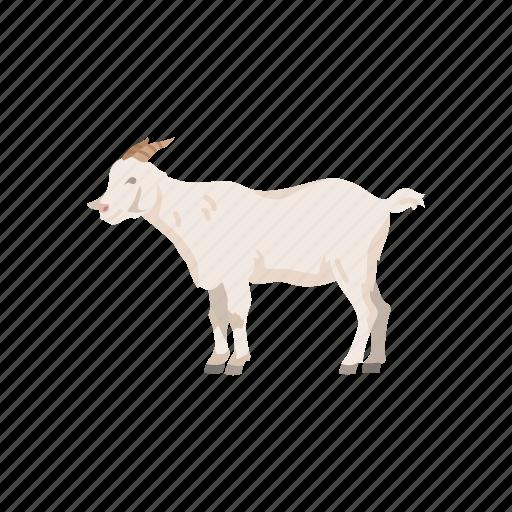 Animals, artboard, mammals icon - Download on Iconfinder