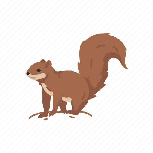animals, baby squirrel, chipmunk, mammal, squirrel, tree squirrel icon