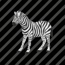 animal, mammal, plains zebra, quagga, wild horse, zebra icon