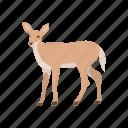 animal, cheetal, chital, deer, doe, mammal, spotted deer icon
