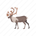 animal, antlers, buk, elk, mammal, moose, wapiti icon